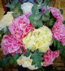 цветы дорогие