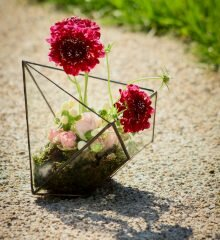 Florarium red